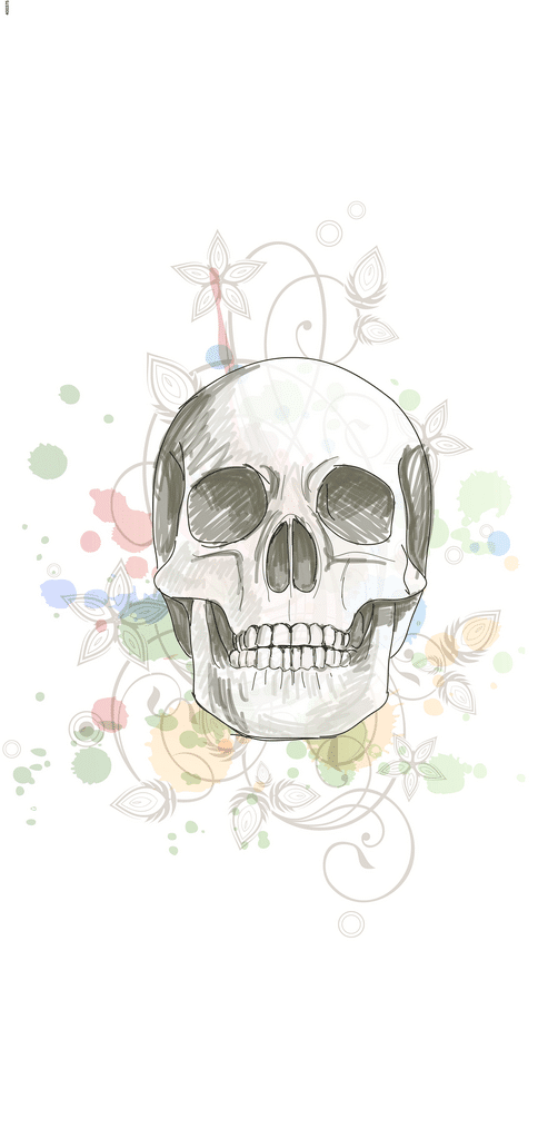 Decorative Skull